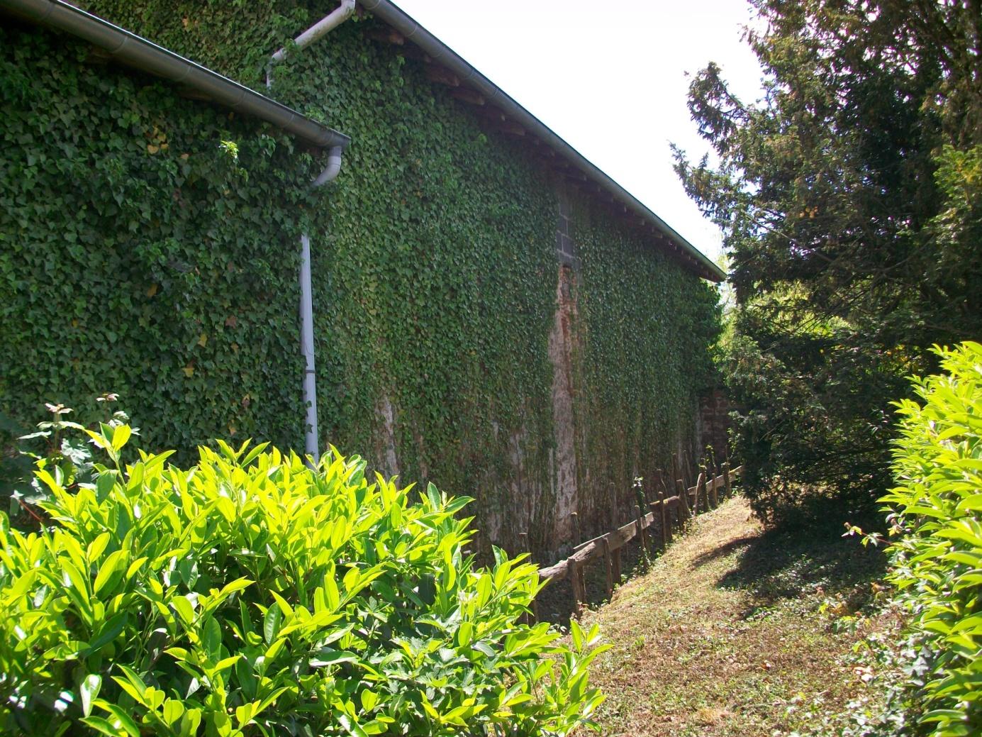 Travaux de restauration d'un mur de maison avec Isolation Thermique par l'Extérieur